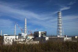Fukushima-kjarnorkuverið.