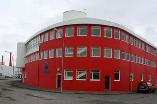 Skúlína segir að fólki hafi litist misjafnlega á það sem fyrir augu bar í Reykjavík.