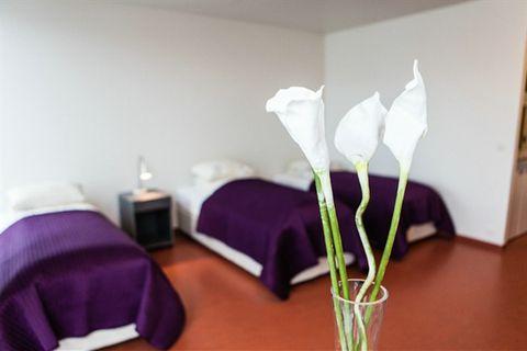 Hotel Bifröst