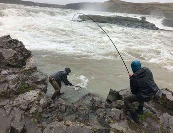 Fyrsta laxinum landað við Urriðafoss í morgun.